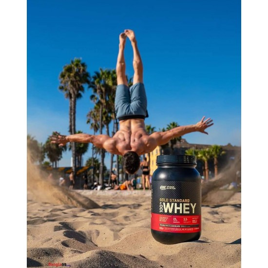 Optimum Nutrition Gold Standard Whey Protein 2lbs New Container